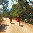 Thai monks on a rural road through a forest — Stock Photo
