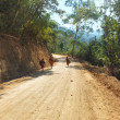 Thai monks on a rural road through a forest — Stock Photo #41287685