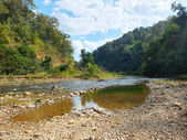 Water stream in northern of Thailand — Stock Photo