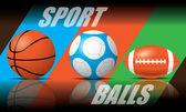 Sport Balls vector — Stock Vector