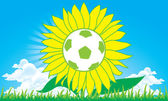 Sunflower soccer football vector — Stock Vector