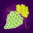 Bunches of grapes. Vector — Stock Vector #42615559