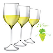 Glass of wine - Bunches of grapes vector — Stock Vector