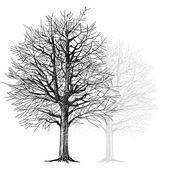 Baum - handgezeichnete — Stockvektor