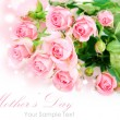 Tender pink roses isolated on white — Stock Photo #20748057