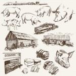 ������, ������: Pig breeding