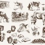vaca y productos lácteos — Vector de stock