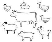 Domestic animals — Stock Vector