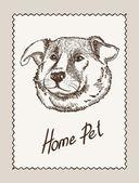 Home pet dog — Stock Vector
