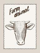 Корова вектор рисованной — Cтоковый вектор