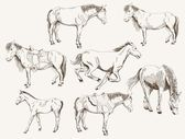 Silhouettes of horses — Vector de stock