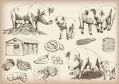 Pig-breeding — Stock Vector