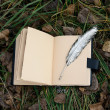 Magic book and silver pen — Stockfoto