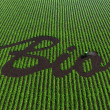 Stock Photo: Word bio on cultivated land