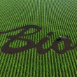 Word bio on the cultivated land — Stock Photo