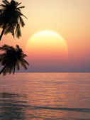 Tropical sunset on a beach — Foto Stock