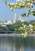 Kiev spring, view of the Lavra — Stock Photo