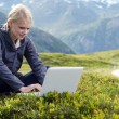 Young blonde woman sits with laptop in alpine meadow - Stock Photo