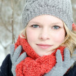 Stock Photo: Young blond womwith beanie and scarf winter wood portrait