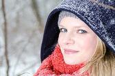 Jovem mulher loira com retrato de madeira inverno gorro e cachecol — Foto Stock