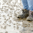 Walk across the mudflats — Stock Photo
