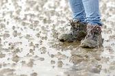 Walk across the mudflats — Stock Photo