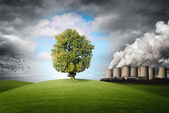 Pollution of the environment — Stock Photo