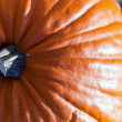 Pumpkin — Stock Photo #8817302