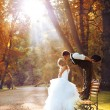 European bride and groom kissing in the park — Stock Photo #22347051