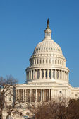 U.S. Capitol Dome Rear Face against Clear Blue Sky — Stock Photo