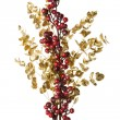 Sparkly Red Berries on Golden Leaves Isolated Background — Stock Photo