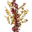 Stock Photo: Sparkly Red Berries on Golden Leaves Isolated Background