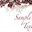 Sparkly Red Berries and Silver Glitter Pearl Leaves Border — Stock Photo