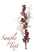Gnistrande röda bär och silver glitter pärla bladen bakgrund — Stockfoto