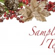 Sparkly Pewter Flowers Shiny Red Berries and Gold Leaves Border — Stock Photo #21296519