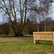New Wooden Park Bench on Green Grass Meadow with Trees — Stock Photo
