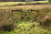Closed Old Rustic Gate in Green Grassy Countryside — Stock Photo