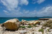 Rocky Coastline at Devil's Bridge Antigua — Stock Photo