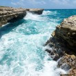 Waves Crashing on the Coastline Devil's Bridge Antigua — Stock Photo