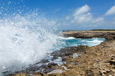 Waves Crashing over Devil's Bridge Coastline Antigua — Foto Stock