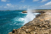 Waves Crashing over Coastline at Devil's Bridge Antigua — Foto de Stock