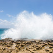 Stock Photo: Waves Crashing Over Limestone Coastline