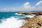 Waves Crashing on Coastline at Devil's Bridge Antigua — Foto Stock