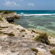 Stock Photo: Rustic Tropical Beach Coastline Antigua