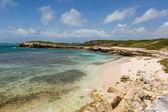 Beautiful Rustic Rocky Tropical Beach Antigua — Stock Photo