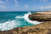 Devil's Bridge Antigua Waves Crashing on Coastline — Stock Photo
