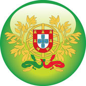 Portuguese flag — Stock Vector