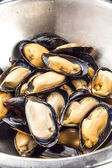 Mussels in metal pot — Stock Photo