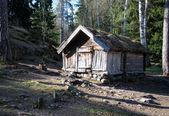 在森林里的房子 — 图库照片