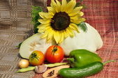 Background of vegetable and sunflower. — Stock Photo
